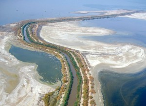 Where the New River flows into the Salton Sea (aerial view)